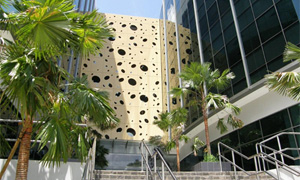 Nestle singapore 619625