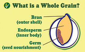 What is a WHOLE GRAIN?