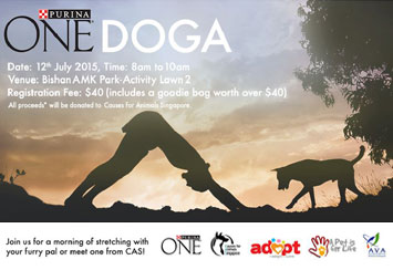 ONEDOGA- YOGA with Dogs