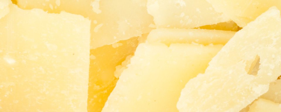 cheese-banner